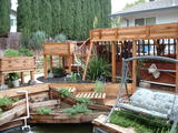 Incredible backyard aquaponics setup!